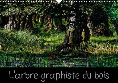 L'Arbre Graphiste du Bois: L'Arbre est le Graphiste de la Foret et de L'interieur de...