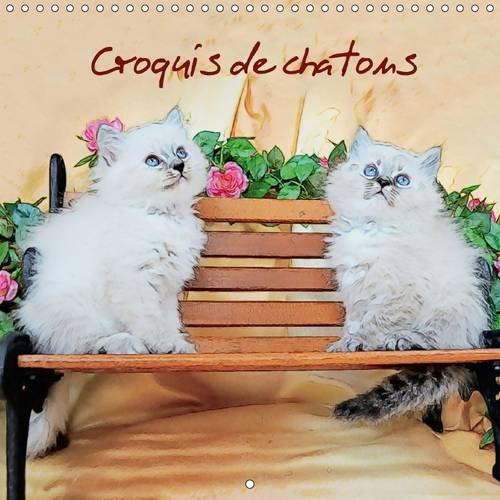 """Croquis de Chatons: Croquis de Chats dans le Style """"Sketch-Art"""" (Calvendo Animaux) (..."""