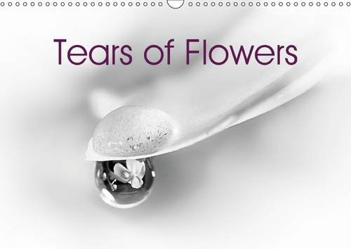 9781325088386: Tears of Flowers 2016: Droplets on petals in Fine Art (Calvendo Art)