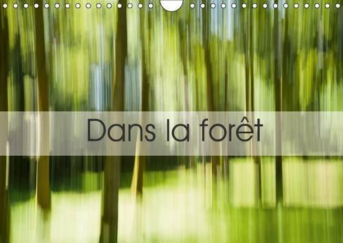 Dans la Foret: Une Suite d'Images Prises en Creuse... (Calvendo Art) (French Edition): ...