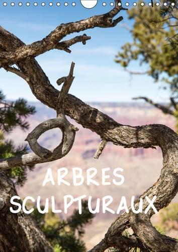 Arbres Sculpturaux: L'Arbre, Comme Sculpture, Dans Des Paysages Grandioses Ou Il Devient Objet...