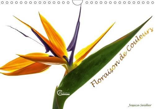 Floraison de Couleurs: La Flore Nous Expose la Diversite de Ses Couleurs (Calvendo Nature) (French ...