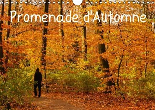 Promenade d'Automne: Une Promenade Haute en Couleurs et Pleine de Serenite. (Calvendo Nature) ...