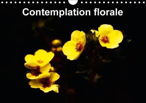 9781325092055: Contemplation Florale: La Contemplation d'Une Fleur est un des Premiers Gestes a Faire pour Comprendre la Beaute Comme Partie Essentielle de Notre Ame. (Calvendo Nature) (French Edition)