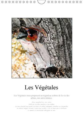 Les Vegetales: Au c/Ur de la Foret de Bonnevaux, Elfes et Lutins, Chamans et Fees. (Calvendo ...