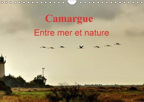 9781325093274: Camargue Entre Mer et Nature: Au c/Ur de la Camargue, Entre Mer et Marais Salants.