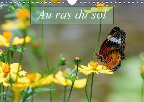 9781325093298: Au Ras du Sol: Macrophotographies d'Insectes