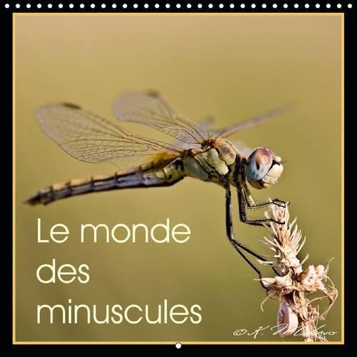 Le Monde des Minuscules: Mise en Beaute des Arthropodes (Calvendo Animaux) (French Edition): Kathy ...