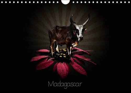 Madagascar: Photographies de Madagascar (Calvendo Places) (French Edition)