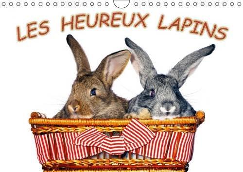 Les Heureux Lapins: Des Lapins Devant l'Appareil Photo. Nous les Lapins, Nous Aimons Etre Pris...