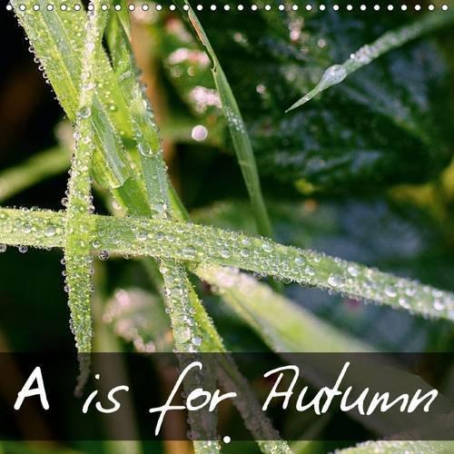 9781325096183: A is for Autumn: A Macro Perspective into the Microscopic World (Calvendo Nature)