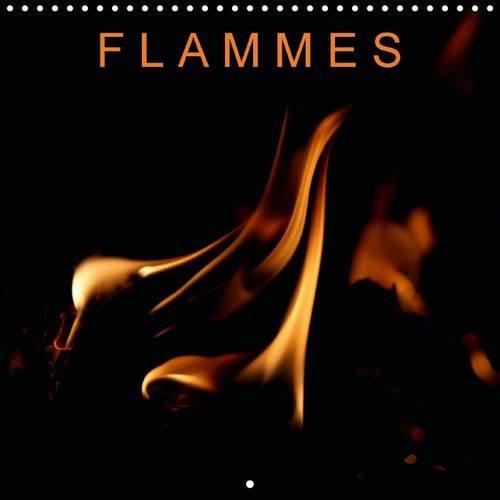 Flammes: Un Autre Regard sur le Feu (Calvendo Nature) (French Edition): Franck Poidevin