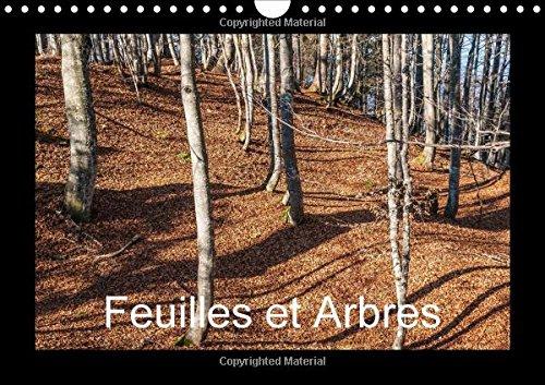 Feuilles et Arbres 2016: Captive par les Saisons (Calvendo Nature) (French Edition): Hans Seidl