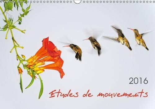 Etudes de Mouvements: Etudes de Mouvements: Serie de Douze Photos Mettant en Scene la Dynamique des...