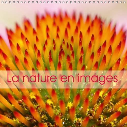 La Nature en Images: La Nature au fil des Saisons, en Photos Macro Hautes en Couleurs. (Calvendo ...
