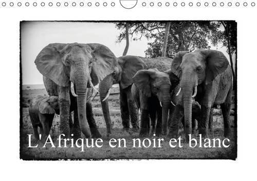 L' Afrique en Noir et Blanc: Vision Inhabituelle du Masai Mara (Calvendo Animaux) (French ...