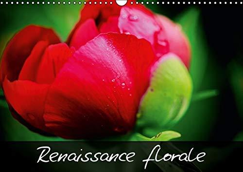 Renaissance Florale!: Embellissons Notre Vie en Admirant la Beaute Naturelle des Fleurs! (Calvendo ...