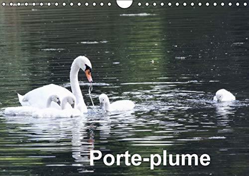 Porte-Plume 2016: Les Oiseaux de Nos Etangs, Lacs et Cours d'Eau (Calvendo Animaux) (French ...