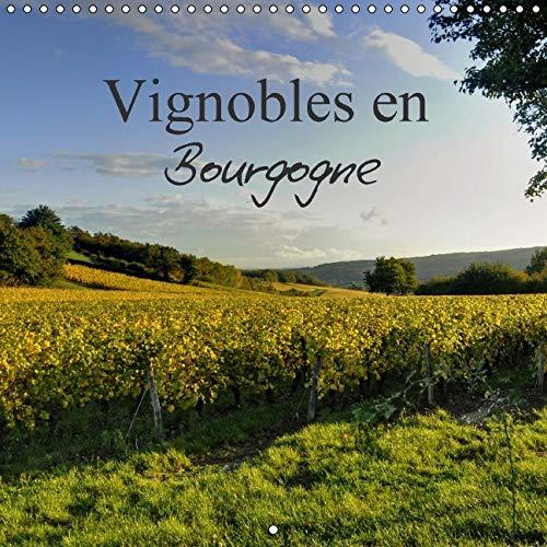 Vignobles en Bourgogne 2016: Magnifique Region Reputee dans le Monde Entier pour la Qualite de Son ...