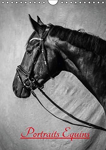 9781325108633: Portraits Equins 2016: Portraits en Noir et Blanc de Chevaux
