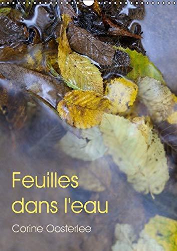 9781325108923: Feuilles dans l'Eau 2016: Eclats de Lumiere sur les Feuilles Inondees (Calvendo Nature) (French Edition)