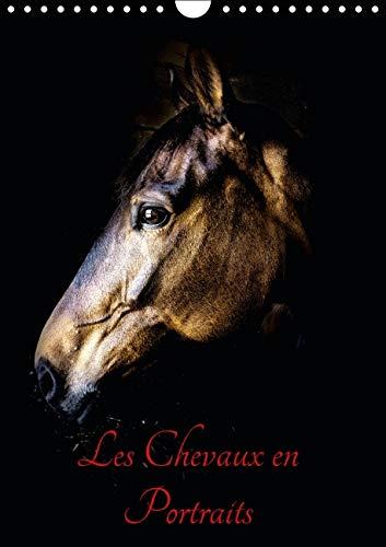 9781325109302: Chevaux en Portraits 2016: Portraits de Chevaux en Liberte et Studio (Calvendo Animaux) (French Edition)