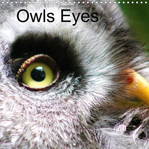 9781325109791: Owls Eyes 2016: The Owl is the Symbol of the Greek Goddess Athena, Full of Mystic Stories and it's Own Natural Beauty.