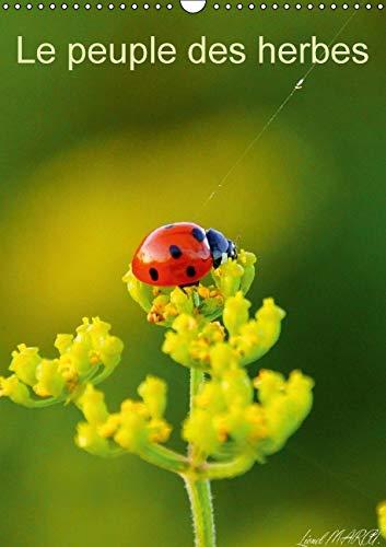 Le Peuple des Herbes 2016: Photos d'Insectes (Calvendo Nature) (French Edition): Lionel Marcu