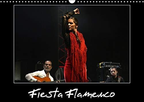 Fiesta Flamenco 2016: Spectacle Estival a Cannes; le Flamenco est a l'Honneur (Calvendo Art) (...