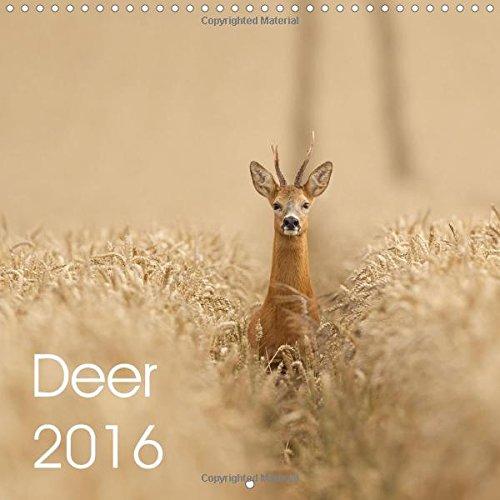 9781325111350: Deer 2016: Deer in the UK