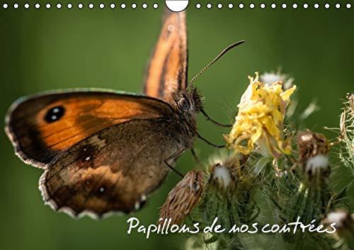 Papillons de Nos Contrees 2016: Palette de Peintures de la Nature (Calvendo Animaux) (French ...