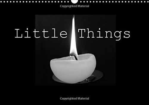9781325112418: Little Things 2016: The Special Moments That Fill Our Lives with Joyful Memories (Calvendo Art)