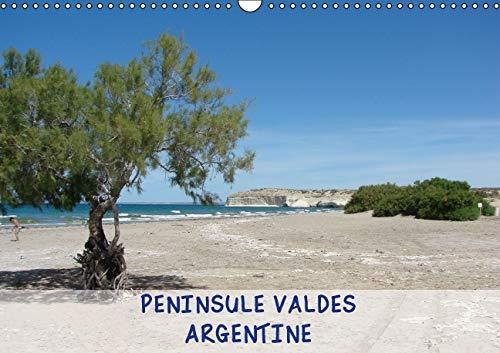 Peninsule Valdes - Argentine 2016: Peninsule Valdes, Reserve Naturelle d'Argentine (Calvendo ...