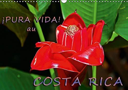 !Pura Vida! Au Costa Rica 2016: Costa Rica - Un Pays Merveilleux Avec une Nature Magnifique (...