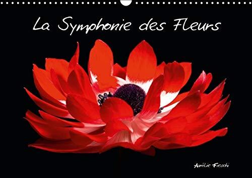 La Symphonie des Fleurs 2016: Venez Decouvrir Mon Univers Graphique et Colore, Charge de Sensations...