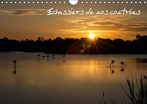 Echassiers de Nos Contrees 2016: Des Oiseaux en Pleine Nature (Calvendo Nature) (French Edition): ...