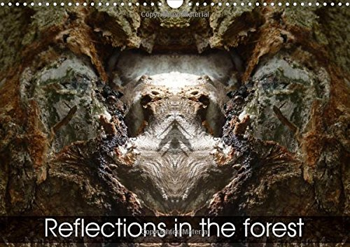 9781325115129: Reflections in the Forest 2016: Dreamworlds in the Forest