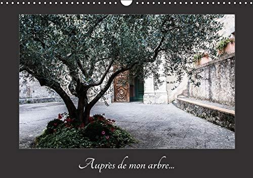 Aupres de Mon Arbre 2016: Au Travers des Saisons l'Arbre et ses Changements (Calvendo Nature) ...