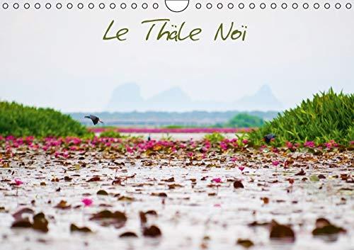 Le Thale Noi 2016: Lac Thailandais dans la Region de Tambon (Calvendo Nature) (French Edition): ...