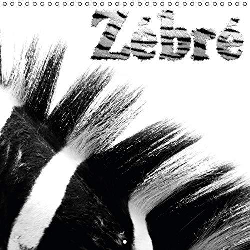 9781325116225: Zébré : Les zébres et leur pelage. Calendrier mural 2016