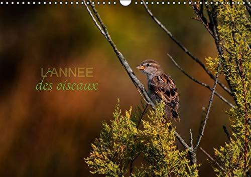 L'Annee des Oiseaux 2016: Calendrier Regroupant Quelques Oiseaux Migrateurs ou Passereaux (...