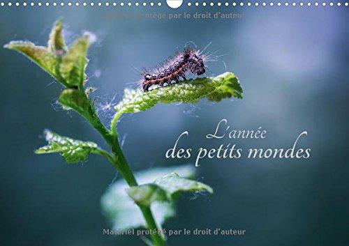 L'Annee des Petits Mondes 2016: A la Decouverte des Insectes du Jardin (Calvendo Nature) (...