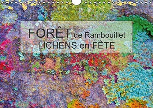 Foret de Rambouillet - Lichens en Fete 2016: Dans la Foret de Rambouillet, Grace a la Profusion de ...