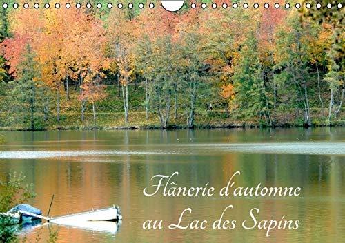 Flanerie d'Automne au Lac des Sapins 2016: Lac des Sapins a Cublize (Calvendo Places) (French ...