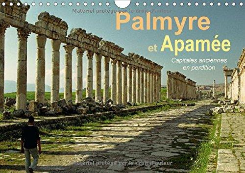 Palmyre et Apamee Capitales Anciennes en Perdition 2016: Deux des Plus Beaux Sites Antiques du ...