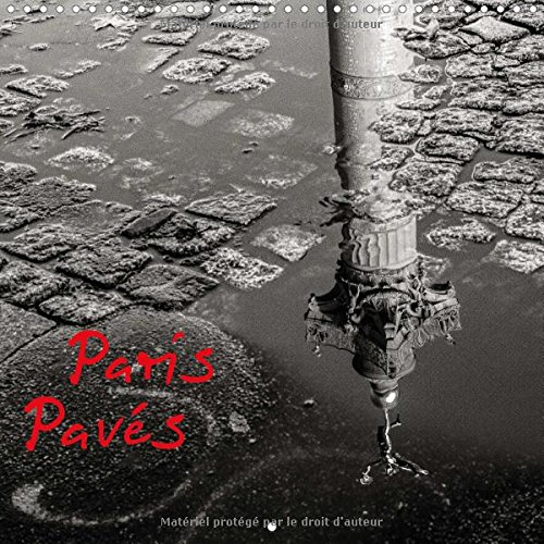 Paris Paves 2016: Paris Dans le Detail, les Ombres et les Reflets (Calvendo Places) (French Edition...