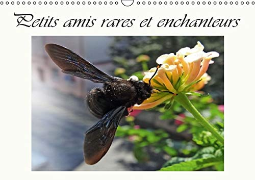 Petits Amis Rares et Enchanteurs 2016: Organisateur - Visiteurs des Fleurs (Calvendo Animaux) (...
