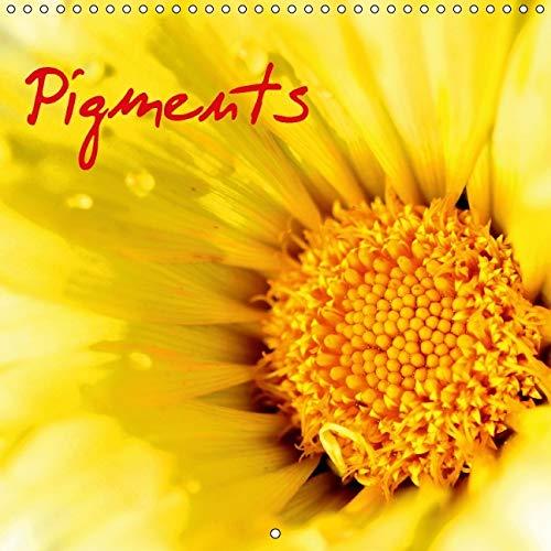Pigments 2016: Macro de Fleurs (Calvendo Nature) (French Edition): Patrice Thebault