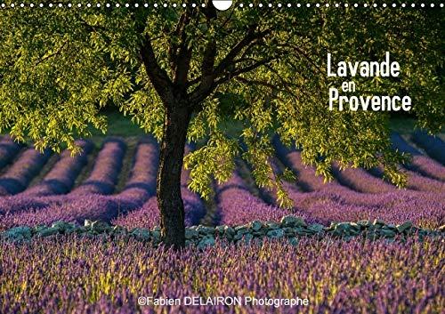 9781325126569: Lavande en Provence 2016: 12 Paysages de Provence ou la Lavande Est Reine (Calvendo Nature) (French Edition)
