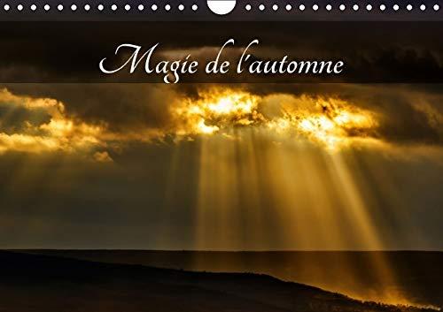 Magie de L'automne 2016: L'Automne, la Plus Belle Saison ! (Calvendo Nature) (French ...